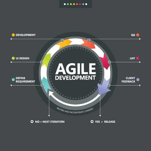 Winning With Agile